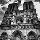 Notre Dame in black and white by Andrea Rapisarda