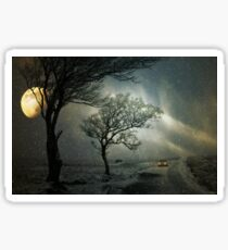 Lonely tree in the winter snowstorm Sticker