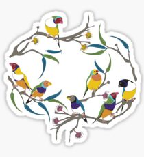 Australian Gouldian (Rainbow) Finches Sticker