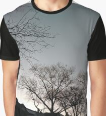 Building, Skyscraper, New York, Manhattan, Street, Pedestrians, Cars, Towers, morning, trees Graphic T-Shirt