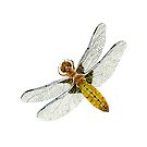 Broad bodied Chaser Dragonfly Insect Watercolor Painting Artwork by Alison Langridge