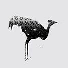 Ornamental Bird by mindprintz