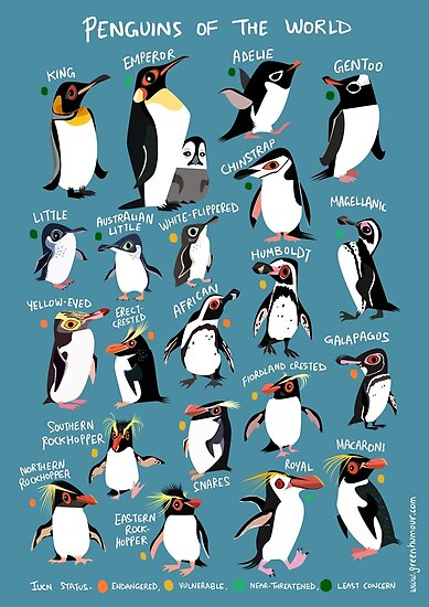 Quot Penguins Of The World Quot Poster By Rohanchak Redbubble