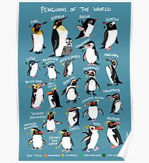 Penguins of the World Poster