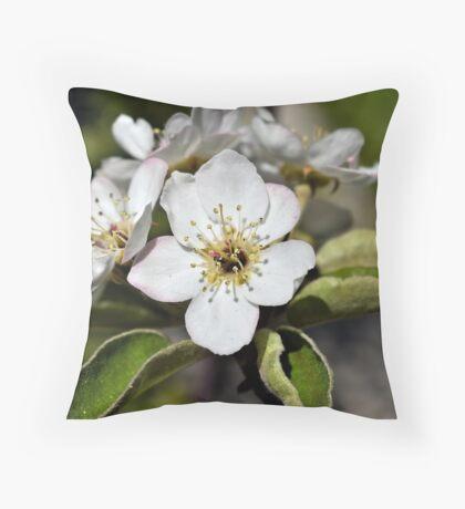 Dwarf Pear Blossom Throw Pillow