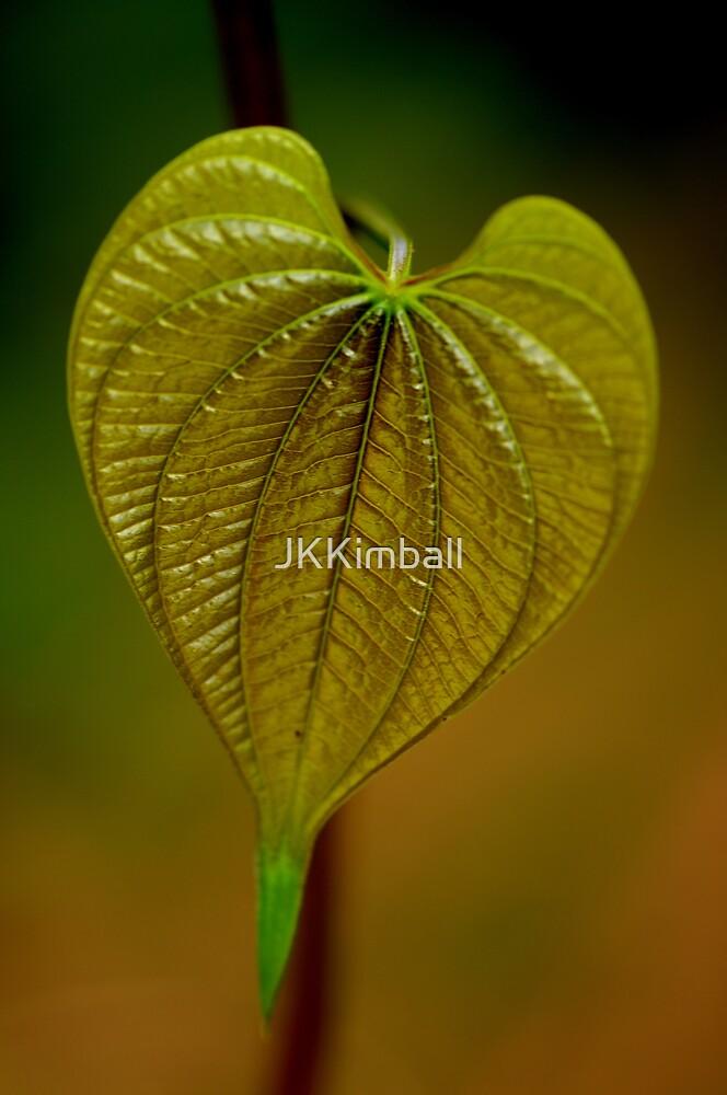 New Heart by JKKimball