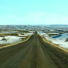 Back Road by Ellinor Advincula