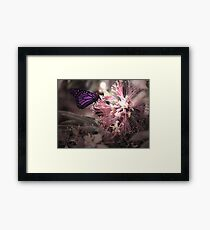 Beautiful Butterfly Framed Print
