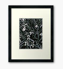 Snowdrop  woodcut Framed Print