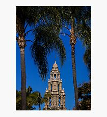 The Bell Tower Palms Photographic Print