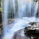 Behind the Falls by Annette Blattman