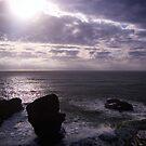 Purple Rocks by llemmacs
