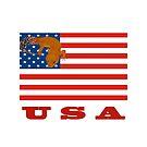 USA American Flag Leopard Gecko by OnlineGeckos
