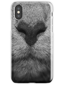 Cat nose  iPhone cases  !cat nose beautiful for lovers cats