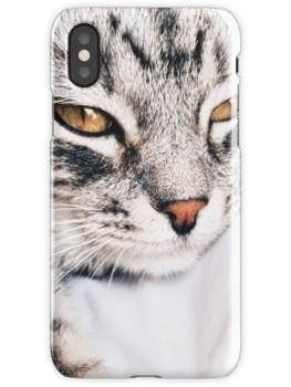 Cat relax iPhone cases! beautiful product for Cats and pets lovers