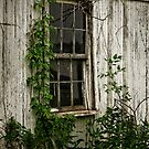 A Window in Time by LarryB007