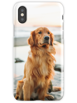 dog look  iPhone cases! beautiful product for dogs  and pets lovers
