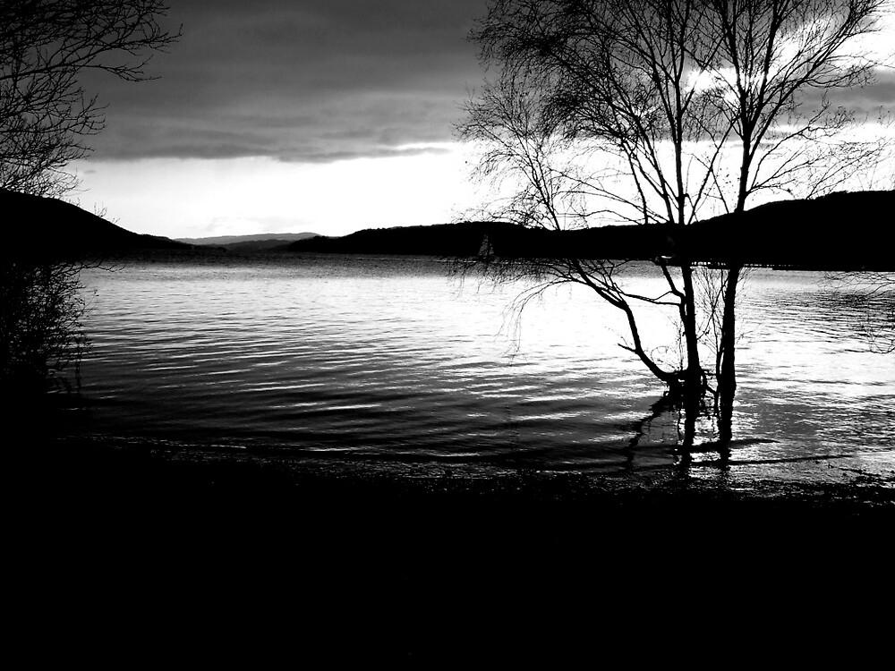 Lake by Amber Hazelton
