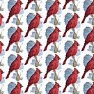 Cardinal by pokegirl93