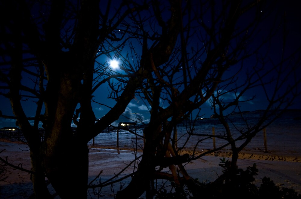 Shetland Winter Moonlight, Shetland Islands, Scotland by Del419