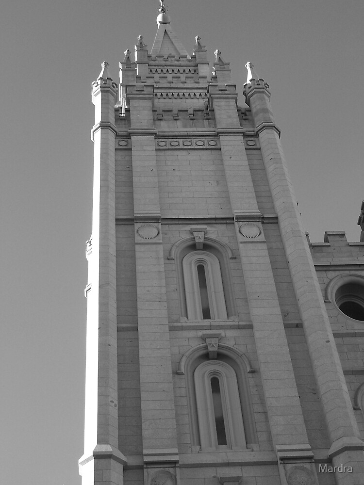 Temple Salt Lake City by Mardra