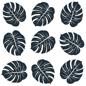 dark monstera leaves graphic exotic pattern on white background by demonique