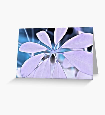 White Plant Greeting Card