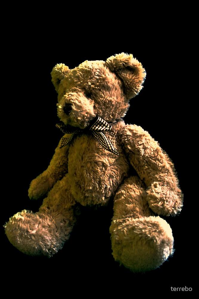 Big Teddy Bear in Light by terrebo