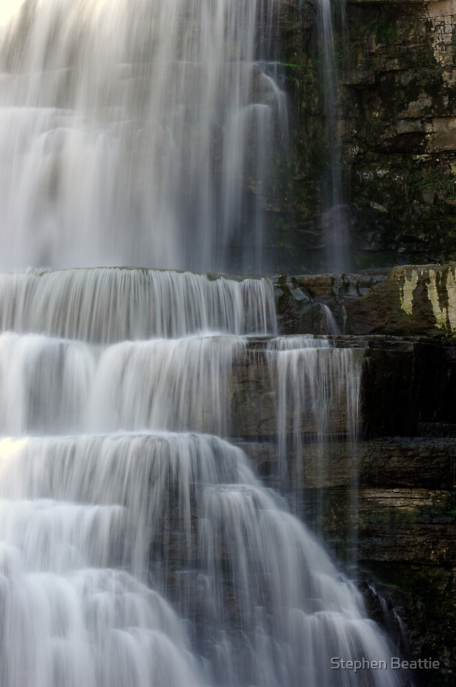 Cascades - Chittenango Falls - Vertical by Stephen Beattie