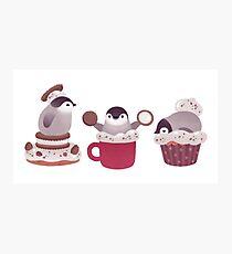 Cookie & cream & penguin Photographic Print
