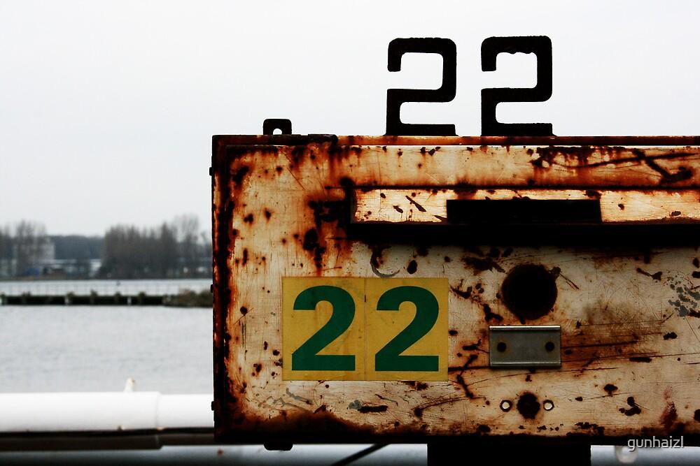 rusty 22 by gunhaizl