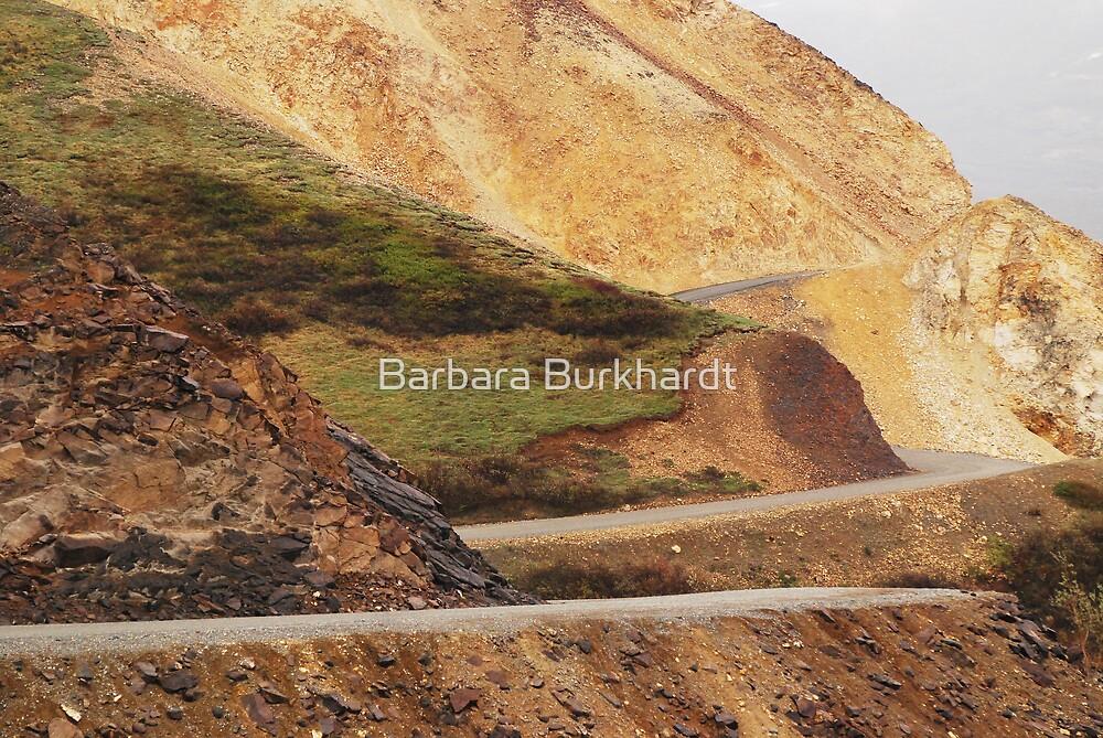 Polychrome Pass - Denali NationaL Park - Alaska  by Barbara Burkhardt