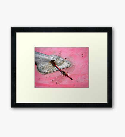 Riding Tandem Framed Print
