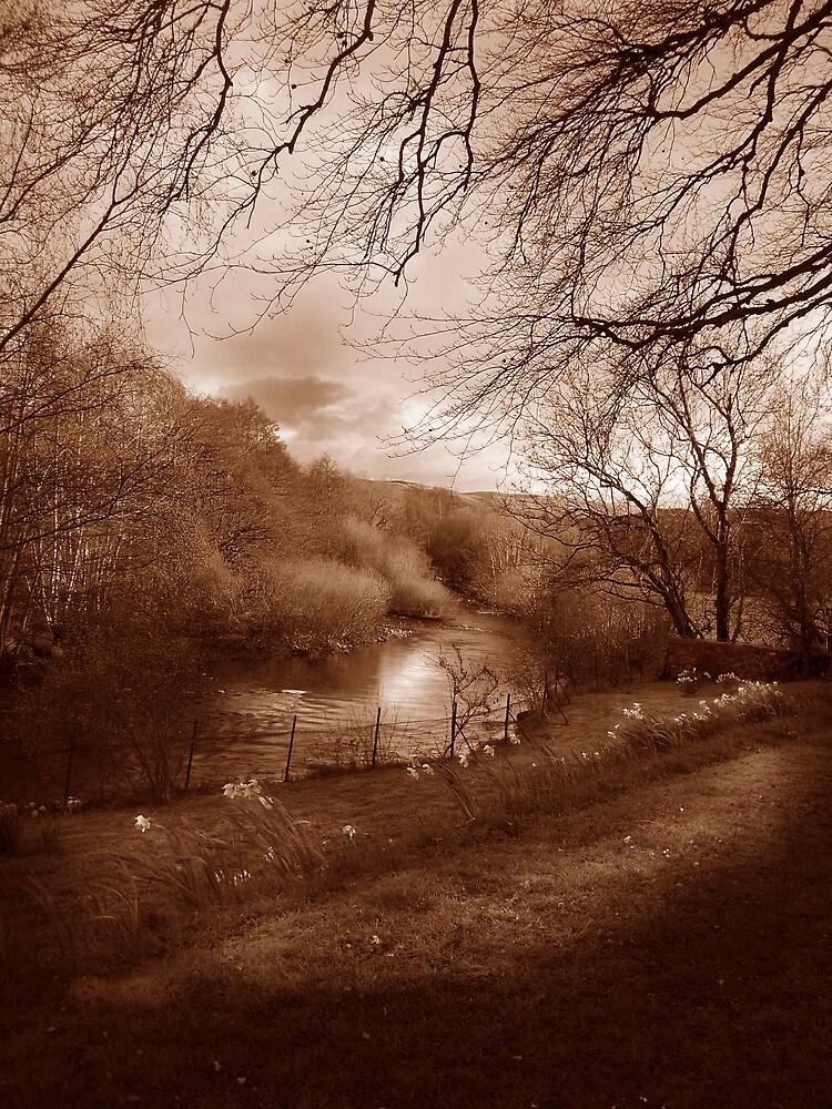River Earn Comrie Scotland by Da-Vie