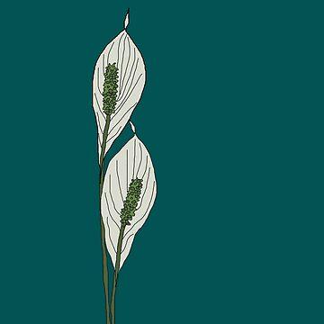 Lis Flower, Flower of peace! by Bubucine