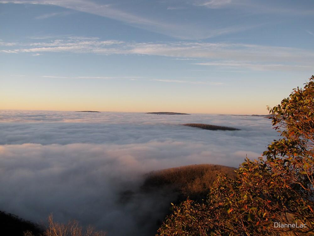 Mt Hotham Autumn Dawn 2 by DianneLac