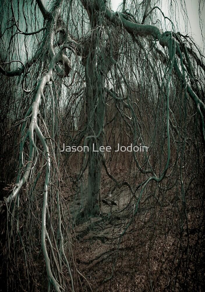 Tree of Oz by Jason Lee Jodoin