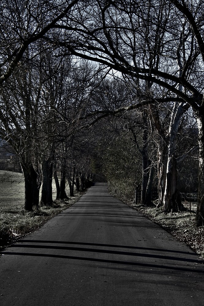 Just Down the Road by AshleePPhotos