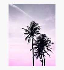 Palms on the Beach Photographic Print