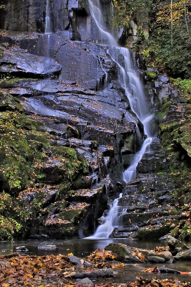 Fall Cascades by AshleePPhotos