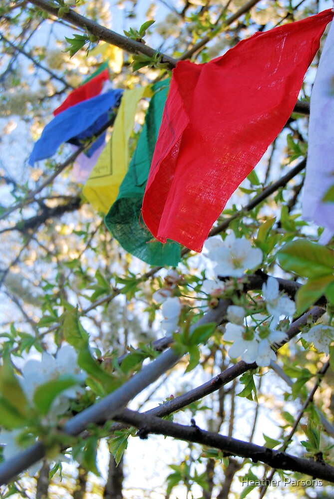 Prayer Flags by Heather Parsons