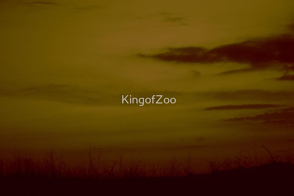 Untitled by KingofZoo