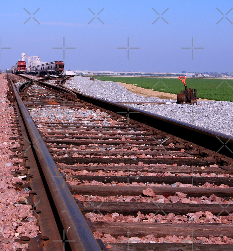 Two Trains Coming Down the Tracks by Buckwhite