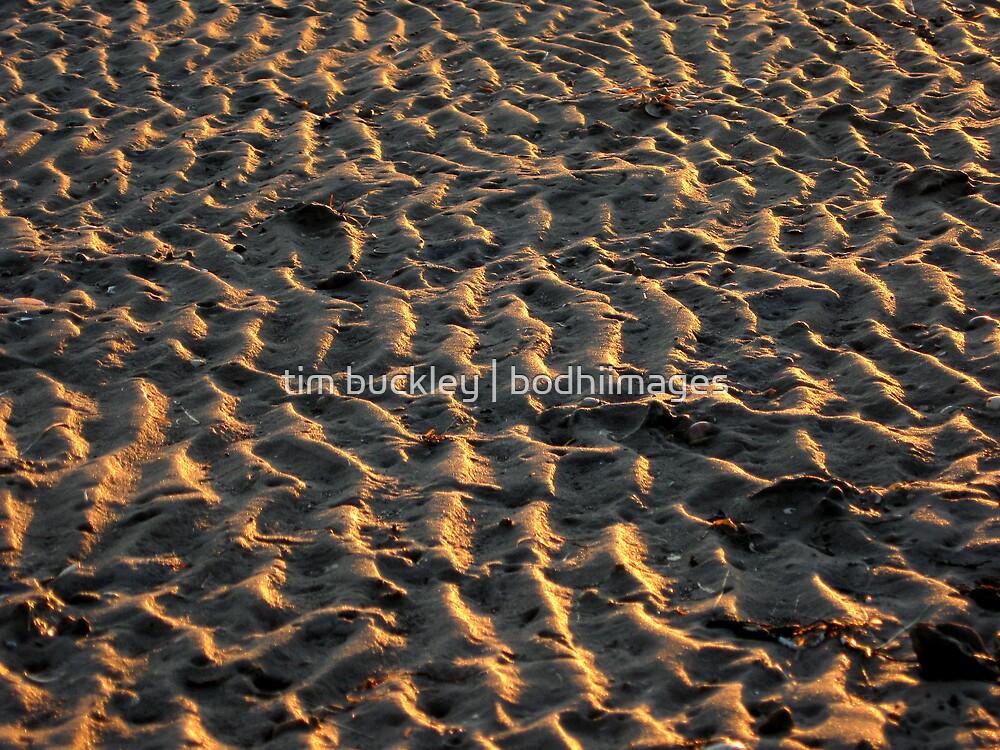 sand flat. gippsland coast, victoria by tim buckley   bodhiimages