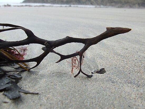 beach art by lukasdf