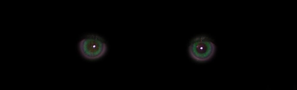 I Am Watching You by visualmetaphor