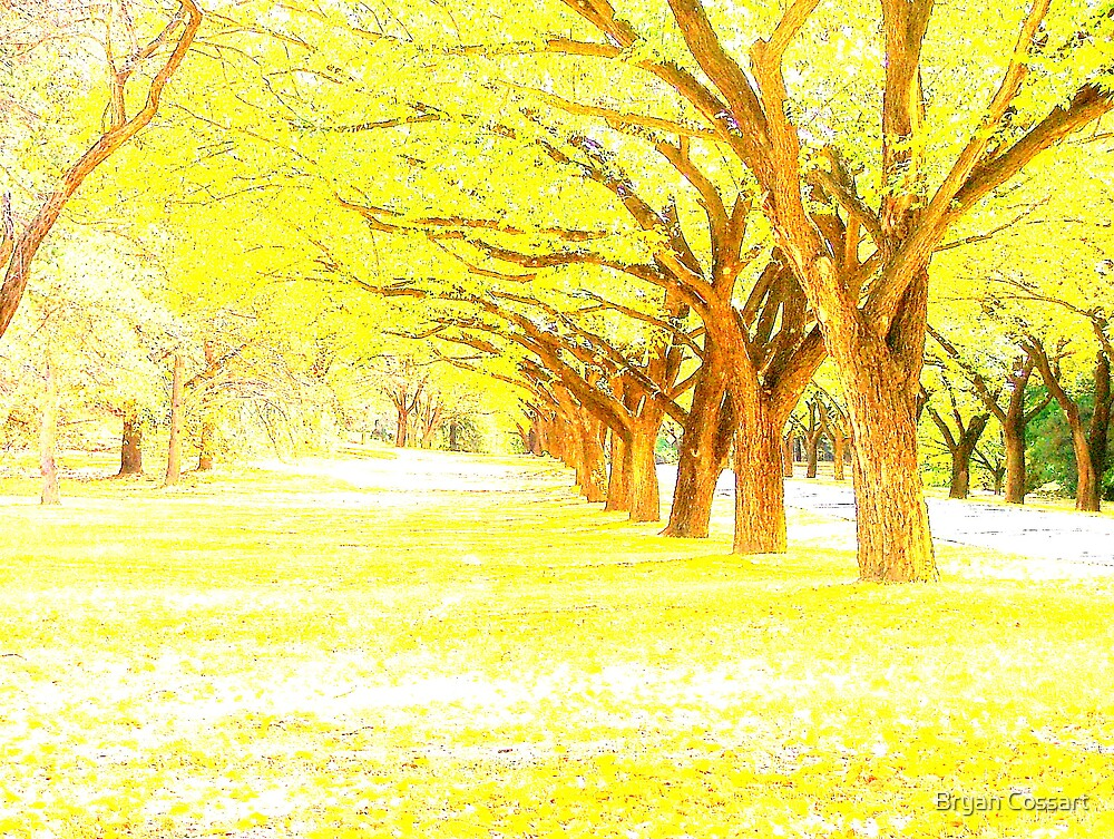Yellow Trees by Bryan Cossart