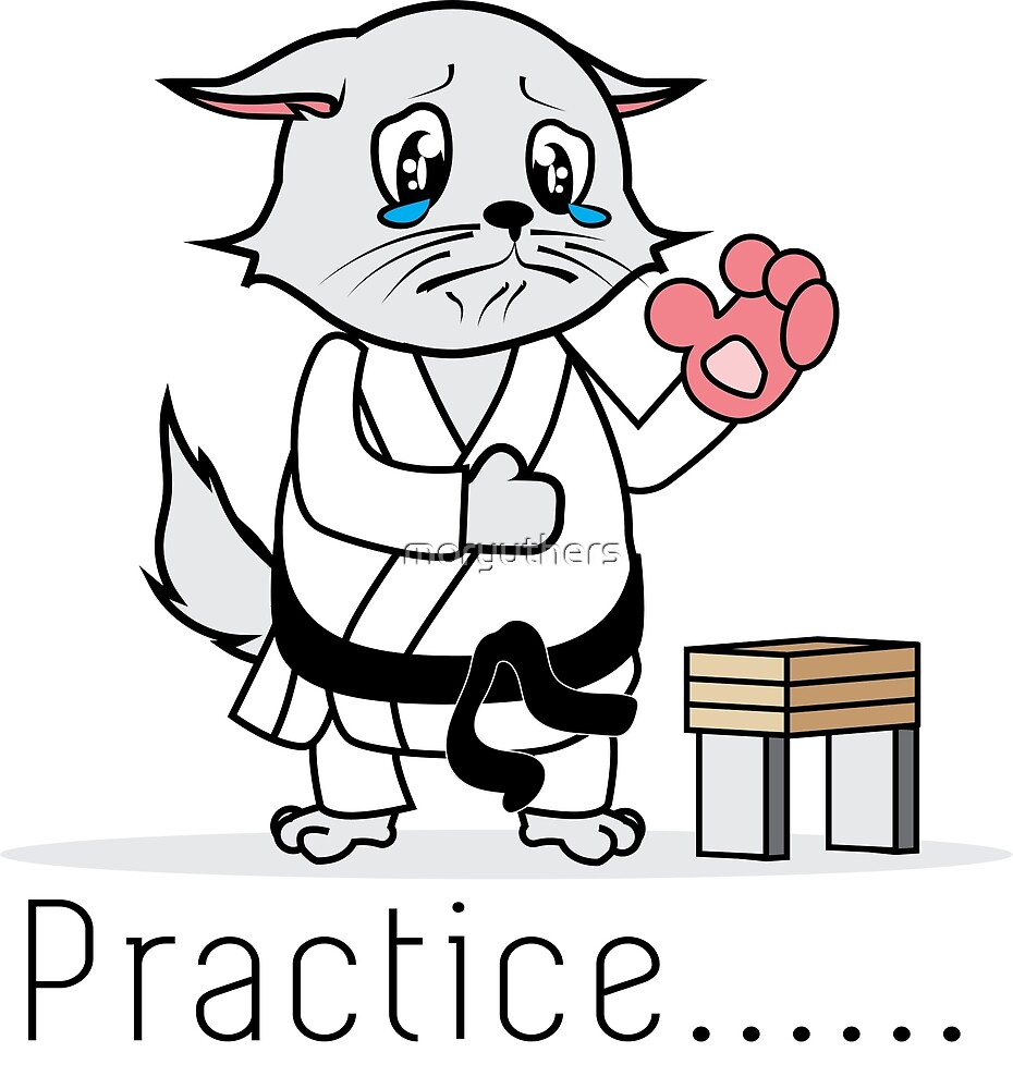 Moryuthers: Karate Cat by moryuthers