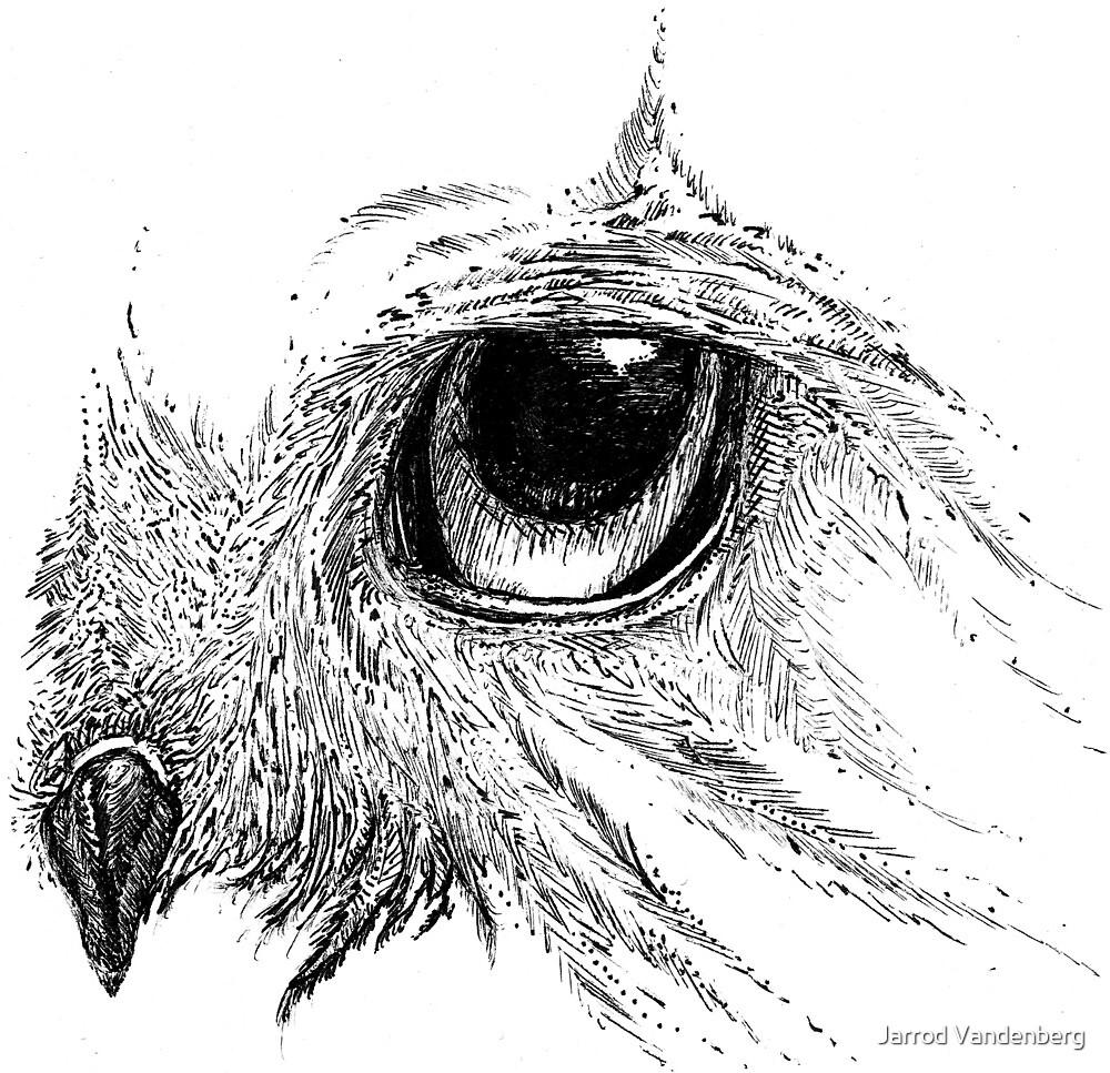 Owl Eye by Jarrod Vandenberg