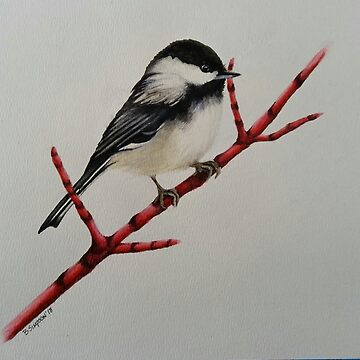 Chickadee by RiseAndConquer